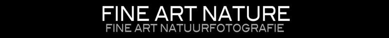 MSP-BANNER-FINEARTNATUREBLACK