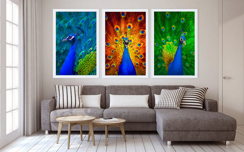 fine art wall print by oxovisuals 024A