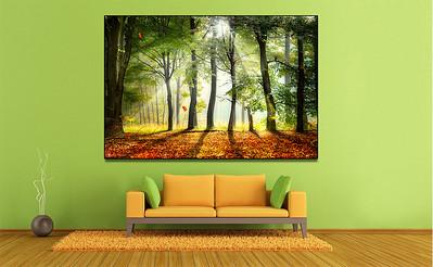 sofa-green-wall-photo-oxovisuals-shops
