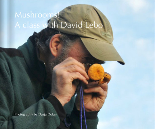Mushrooms! A class with David Lebo Photography by Dasja Dolan Photography by Dasja Dolan Photography by Dasja Dolan Book Preview Blurb Books