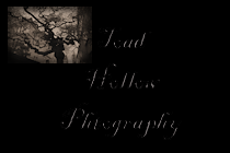 ToadHollowPhotography-CheckOut