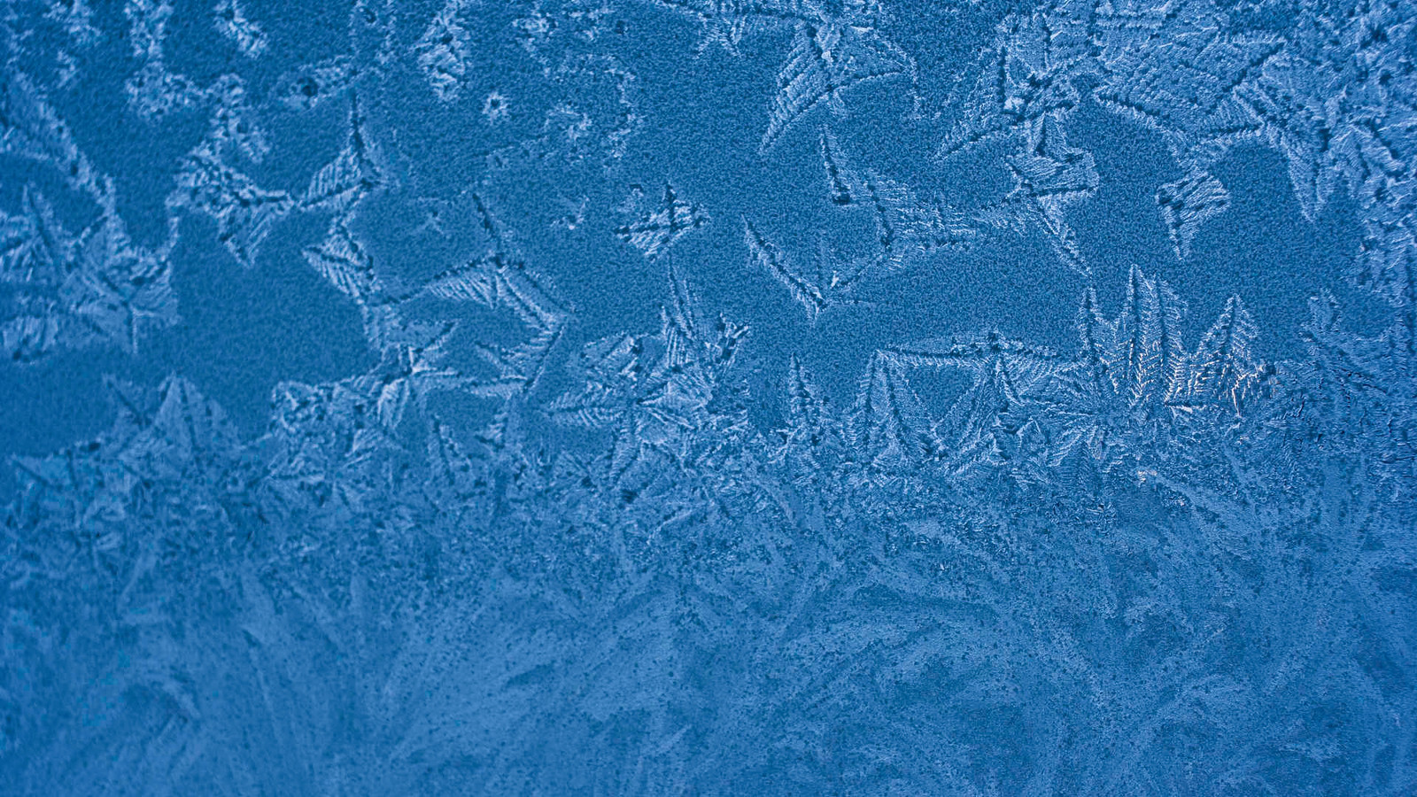 Ice Abstract 8