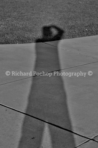 My Shadow Self