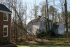 20080211 Tulip Poplar, struck by lightning June 11 2006 that was felled by wind yesterday (3 of 10)