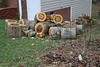 20080216 Logs for neighbor for his fireplace