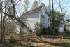 20080211 Tulip Poplar, struck by lightning June 11 2006 that was felled by wind yesterday (2 of 10)