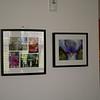 photographs in guest bedroom.