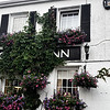 """Another shot of the Ivy growing over the Inn. So the sign above the establishment says """"Free House"""" on it, which means that they aren't attached to any particular brewery and are able to sell whatever alcohol they would like."""