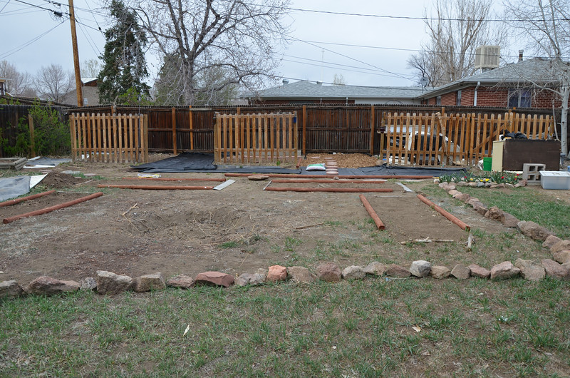 work in progress, adding the four new beds in the main area of the yard. It allowed me to turn 3 or the older beds into places for perennial plants, kinda a hard choice, but there are things I want to keep in the garden all the time, so I made the commitment