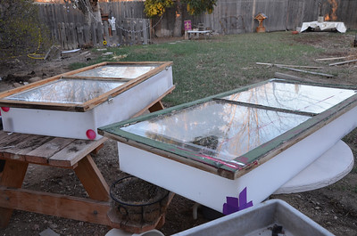 my seed started boxes. I used plastic tanks, hinged old windows on the top, and sealed the doors with weather stripping, they worked so good. However, a wind & rain storm last year destroyed them both and damaged my started plants, so this year I need to make a new plan for seeds.