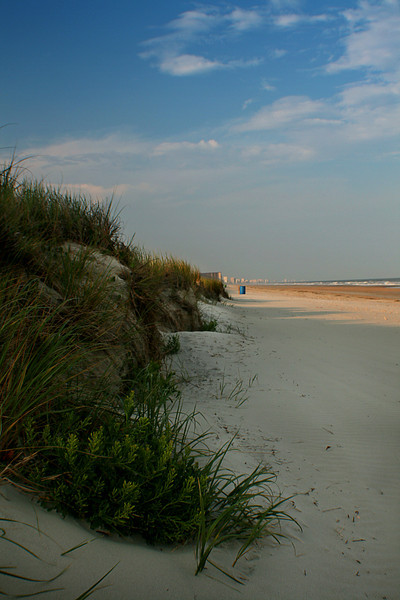 Looking north on the beach.