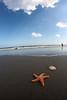 Beach scene.
