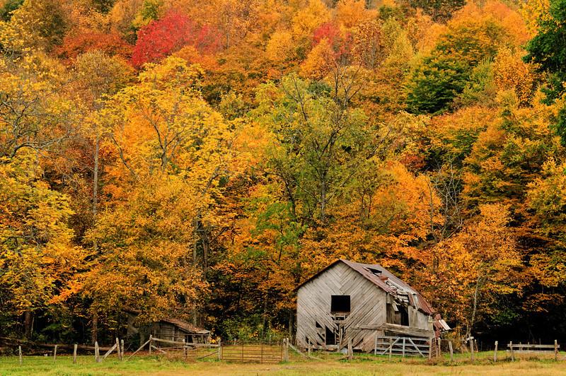 Barn in Field, Hwy. 194