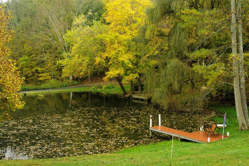 Side Yard Pond, Frank Edwards Road