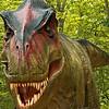 T-Rex:  Your Worst Nightmare