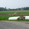 Ben Blank fields