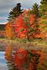 Antrim N.H. Foliage