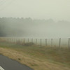 Fog driving to the track