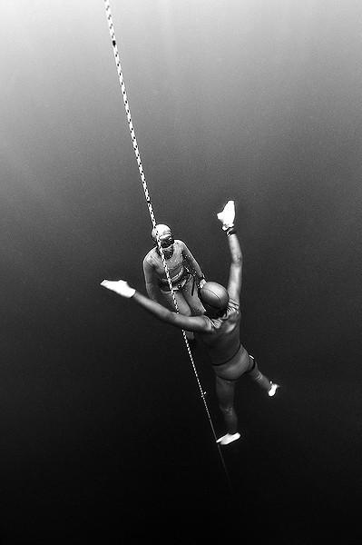 Freedom - 1:a i vidvinkel med dykare i nordiska vatten.