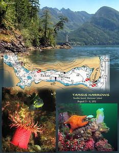 Tahsis Narrows, , Nootka Sound, British Columbia. August 3, 2012