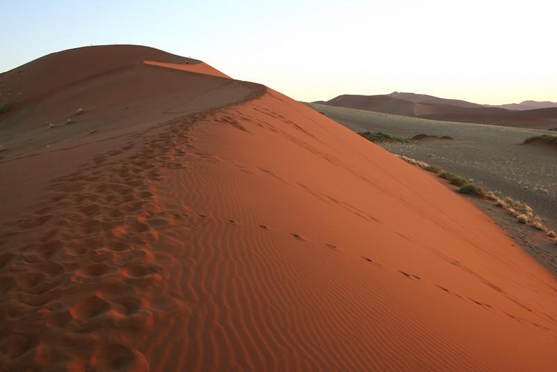 "soussvlei national park.  google earth: 24º43'57.65""S  15º17'19.17""E"