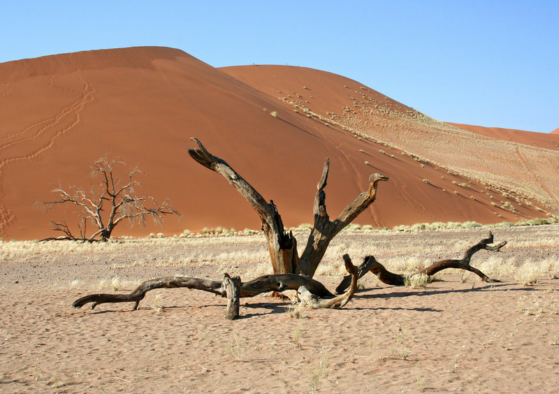 soussvlei national park