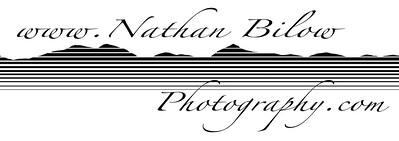 NBP Logo 7x20