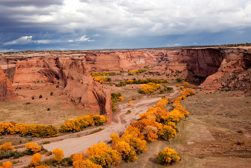 Fall colors in Canyon De Chilly, Arizona