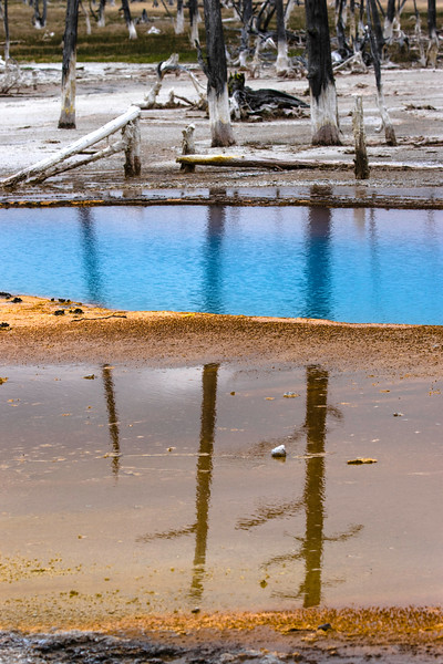 Turquoise Reflections at Yellowstone