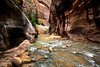 The narrows of Virgin River in Zion National Park, Utah