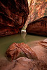 The narrows of the Virgin River in Zion National Park Utah