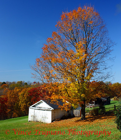 Cline farm on Greenbrier Road in Weirton, WV - 2011