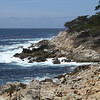 Lone Cypress area - 17-Mile Drive, Pebble Beach, CA