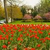 Sherwood Gardens-9