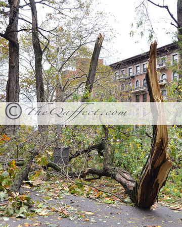 Hurricane Sandy_Harlem_031