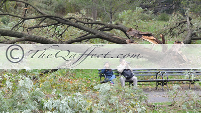 Hurricane Sandy_Harlem_017