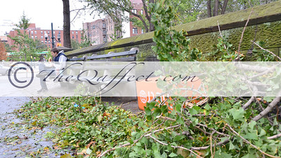 Hurricane Sandy_Harlem_012