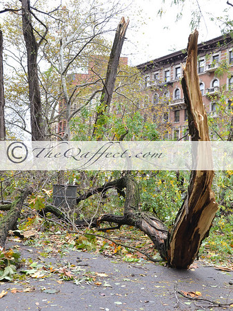 Hurricane Sandy_Harlem_032