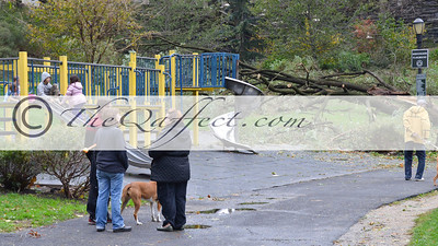 Hurricane Sandy_Harlem_016