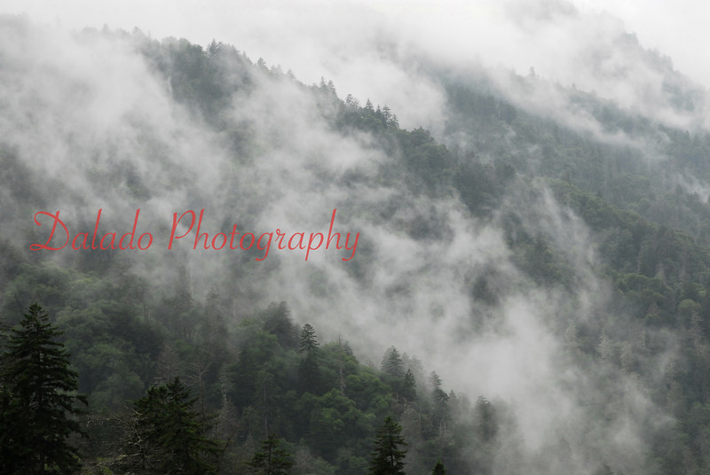 Fog in the Smokey Mountains.