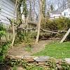 White Oak March 26 20046