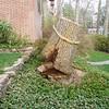 White Oak March 26 200438
