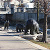 Three bear statues along the Fox River through Waukesha, WI