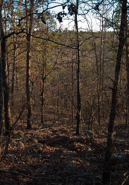 Wye Mountain Arkansas