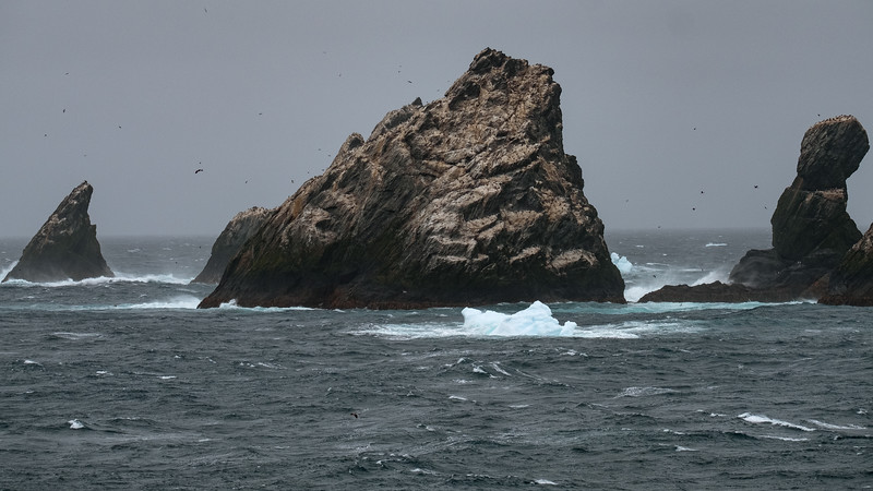 Shag Rocks, Southern Ocean