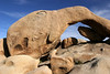 Elephant Rock, Joshua Tree