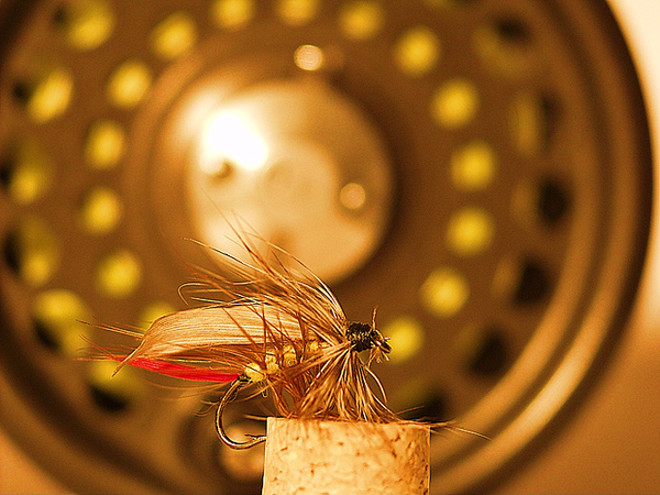 Of of Bob's flies and his reel.