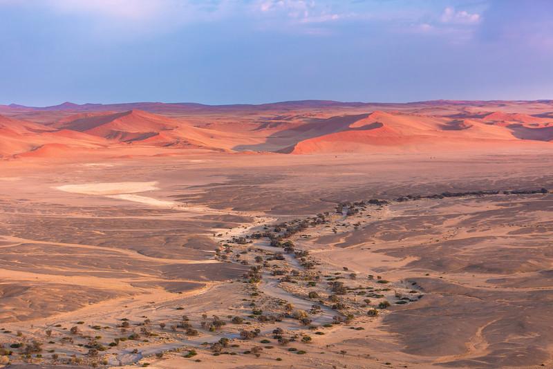Dry River Bed, Sossusvlei , Namibia