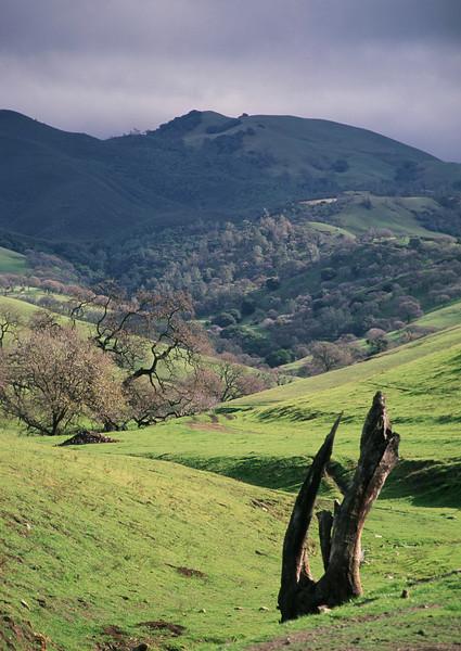 Mt. Diablo, CA