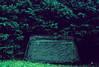 Eponymous grave stone in Mount Auburn Cemetery, Cambridge, MA